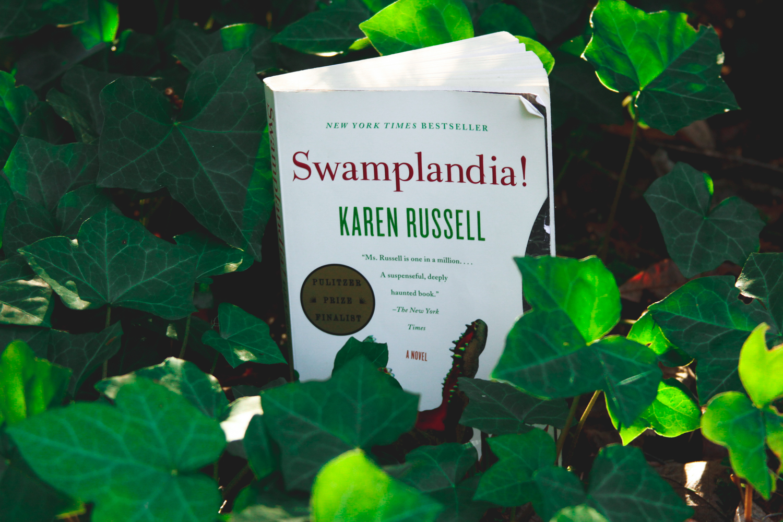 Swamplandia! | eyreeffect.com
