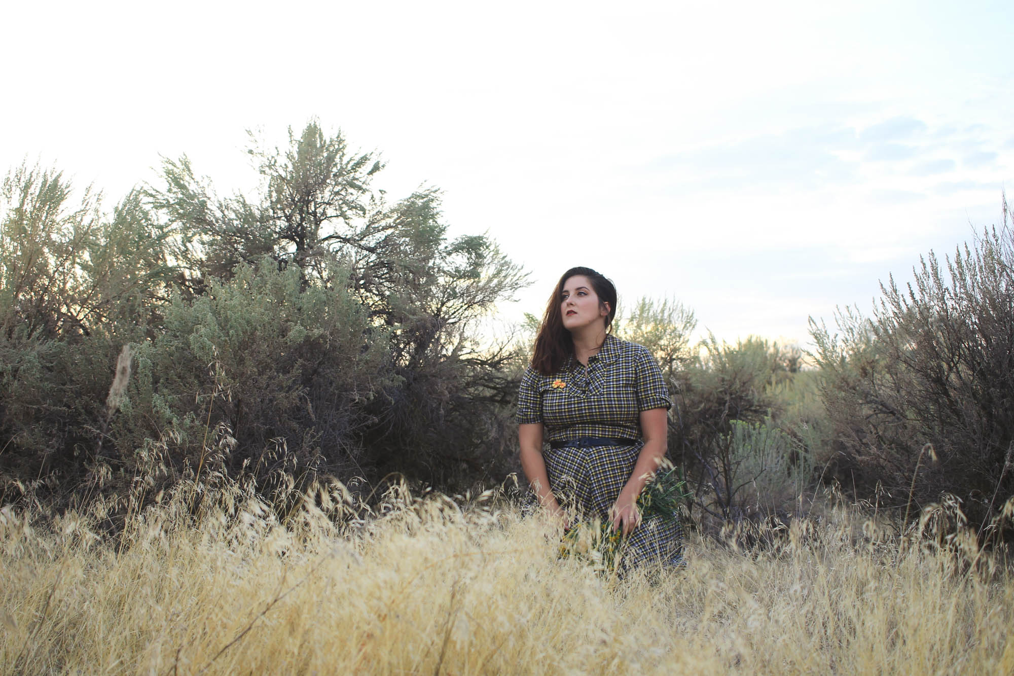 Desert Memory | eyreeffect.com